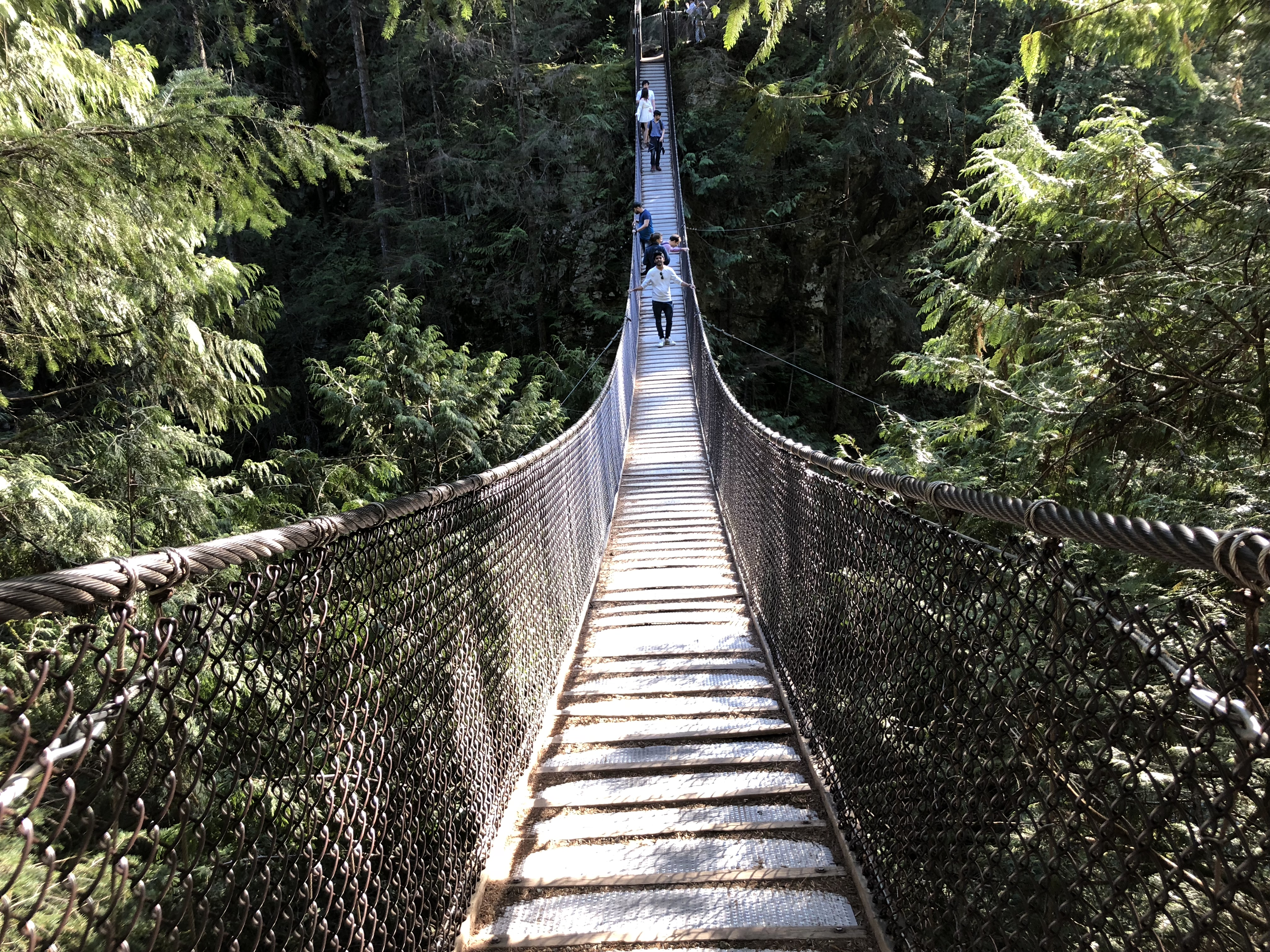 Free Suspension Bridge at Lynn Valley in Vancouver